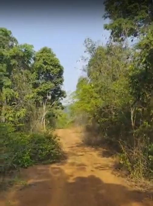 Naked Jungle Run | Naturist Association Thailand